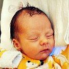 Leontýna Černá se narodila Lucii Černé z Teplic 12. října v teplické porodnici v 9,38 hodin. Měřila 44 cm, vážila 2,35 kg.