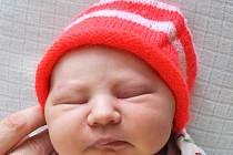 ROZÁRIE HENTSCHLOVÁ se narodila Kateřině Hentschlové z Oseku, 4. srpna v 8,29 hod. v teplické porodnici. Měřila 49 cm a vážila 3,30 kg.