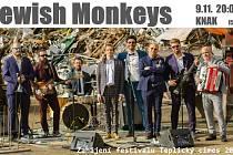 Jewish Monkey.