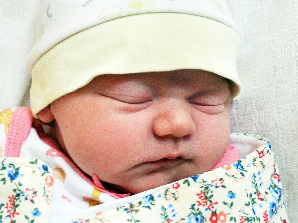 Julie Veigertová se narodila  Jitce Veigertové z Teplic 11. dubna v teplické porodnici v 0,39 hodin. Měřila 51 cm, vážila 3,60 kg.