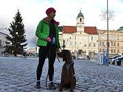 Z Teplického zimního půlmaratonu...