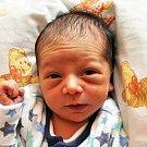Tomáš Ferenc se narodil Haně Ferencové z Krupky 2. srpna  ve 2.23  hod. v teplické porodnici. Měřil 49 cm a vážil 2,85 kg.