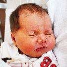 SOFIE HASPROVÁ se narodila Denise Hasprové z Ledvic 5. listopadu v 6.25 hod. v teplické porodnici. Měřila 48 cm a vážila 3,35 kg.