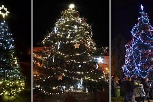 Vánoční stromy na Teplicku