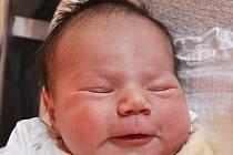 Jana Lajblová se narodila Janě Lajblové ze Světce 27. dubna v 11.28 hod. v teplické porodnici. Měřila 47 cm a vážila 3,15 kg.