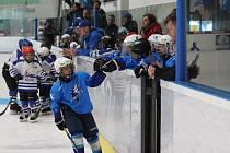V Plzni se hrál hokejový turnaj Wolves Cup pro ročníky 2013