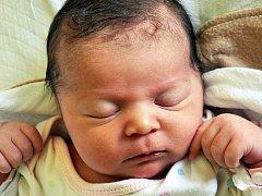 Leontýna Zemanová se narodila Petře Meszárošové  z Teplic 19. června v 5.13 hod. v teplické porodnici. Měřila 52 cm a vážila 4,0 kg.