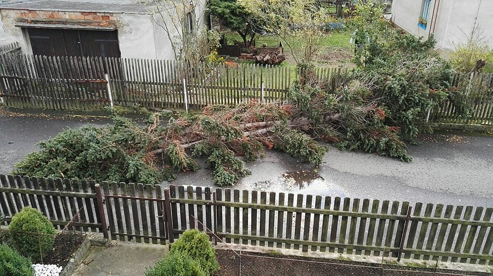 Spadlý strom zatasil ulici Na Pěnkavce v Proboštově.