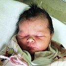 Nicol Tittelová se narodila Janě Tittelové z Hrobu 11. ledna   ve 2.37  hod. v teplické porodnici. Měřila 51 cm a vážila 3,55 kg.