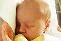 Tereza Dvořáková se narodila Adrianě Kolbabové z Teplic 20. prosince v 21.42 hodin. Měřila 48 cm, vážila 3,00 kg