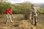 Ochránci přírody hledají dobrovolníky
