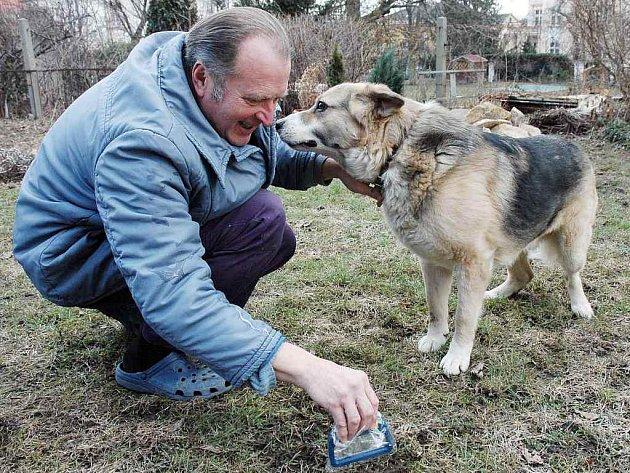 Clipnex - nástroj na psí lejna