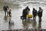 Tepličtí rybáři provedli výlov rybníka Malá Barbora.