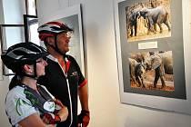 """Osecké """"íčko"""" ukazuje africké snímky fotografaJiřího Reissiga."""