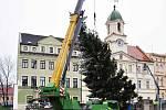 Teplice budou mít letos sedm vánočních stromů.