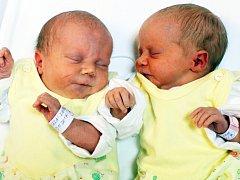 Victorie a Valerie Veselé se narodily Adéle Bailové a Petru Veselému z Krupky 13. listopadu v  8.27 / 8.29 hod. v ústecké porodnici. Měřily 45 / 43 cm a vážily 2,57 / 2,13 kg