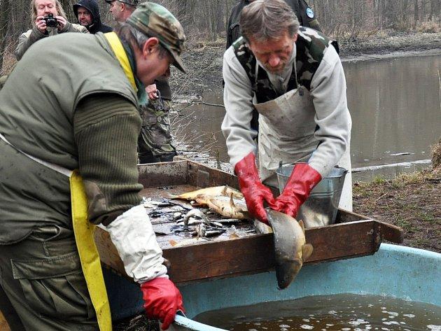 Výlov rybníka Jaroslav