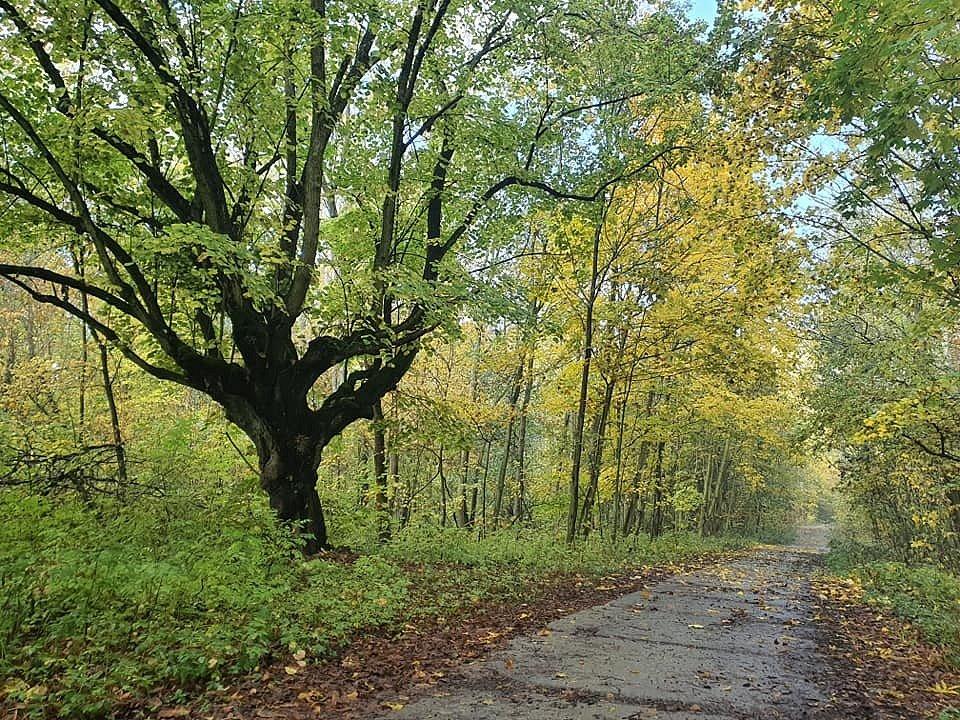Podzimní procházka přírodou v okolí Hrobu.