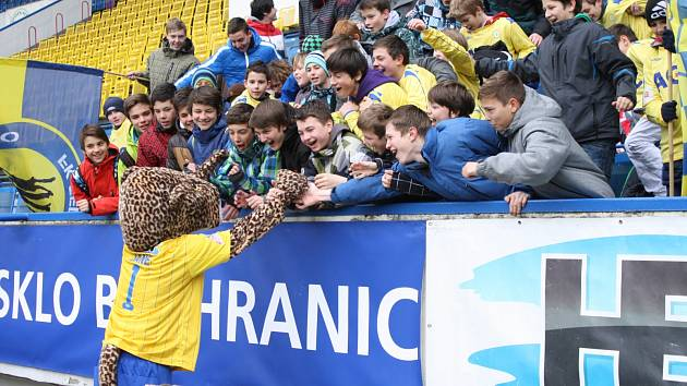 Gepardice Jane s fanoušky
