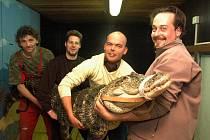 ČTYŘI PROTI JEDNOMU. Na vlastní kůži jsem se stal (druhý zprava) Lovcem krokodýla v cirkusu Berousek Sultán.