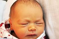 Vítek Dlouhý se narodil Lucii Dlouhé z Dubí 16. srpna v10.06 hod. v teplické porodnici. Měřil 47 cm a vážil 2,85 kg.