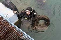 Potápěči vytáhli ze dna Barbory železo i petky