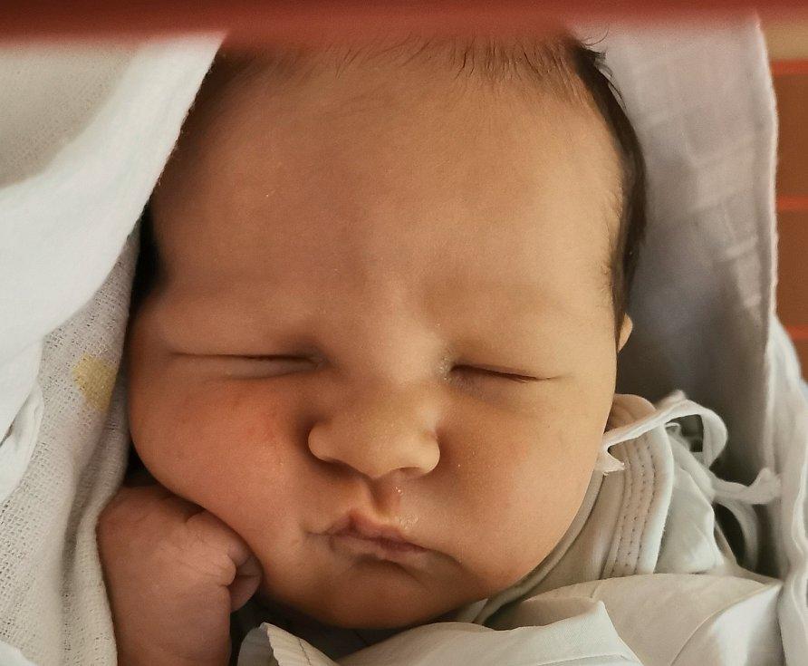 Albert Šerý se narodil mamince Radce Šeré Kučerové v ústecké porodnici 17. února 2021 v 9.09 hodin. Měřil 52 cm a vážil 3,64 kg.