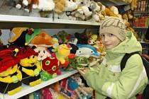 V hračkářství