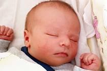 Jan Töpfer se narodil Lence Töpferové z Teplic 19. května v 14,55 hodin v teplické porodnici. Měřil 53 cm, vážil 3,85 kg.
