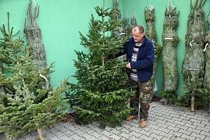 Prodejvánočních stromků je v plném proudu.