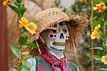 Botanka láká na výstavu Día de los Muertos.