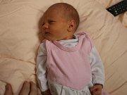 Stella Karlová se narodila Petře Karlové z Bíliny 17. února ve 20.49 hod. v ústecké porodnici. Měřila 49 cm a vážila  2,91 kg.