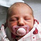 Sára Kratochvílová se narodila Haně Kratochvílové z Bystřice  19. února v 10.39 hod. v teplické porodnici. Měřila  49 cm a vážila  3,0 kg.