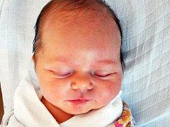 NIKOLA MUSILOVÁ se narodila Radce Kodešové z Teplic 14. května v 11.55 hod. v teplické porodnici. Měřila 50 cm a vážila 3,45 kg.