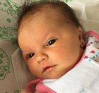 Petra Netíková se narodila Petře Hýlové z Teplic dne 6. července v 15.08 hod. v teplické porodnici. Měřila 51cm a vážila 3,60 kg