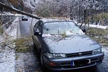 Spadlý strom zablokoval silnici