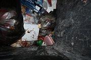 Peněženka v popelnici.