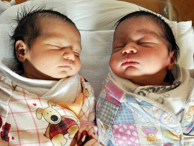 Vanesa a Dominik se narodili Lucii Holubové z Teplic 17. března ve 12.52 a 12.55 hod. v teplické porodnici. Měřili 45 a 49 cm a vážil 2,35 a 3,20 kg.