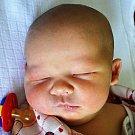 SEBASTIAN POMPE se narodil Zdeňce Kubíčkové  z Teplic  14. února v 8.31 hod. v teplické porodnici. Měřil 52 cm a vážil 4,10 kg.