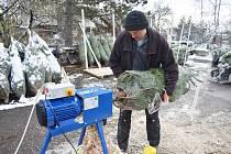 Prodej stromků v duchcovském zahradnictví Krtek.