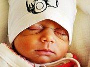 Mischel Balogová se narodila Martě Balogové z Krupky 29. listopadu v teplické porodnici v 14,20 hodin. Měřila 44 cm, vážila 2,15 kg.