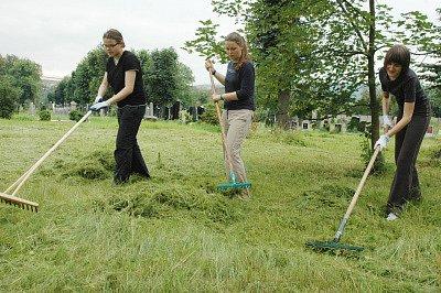 Studenti uklízejí teplický židovský hřbitov.