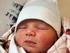 ELLA KUTHANOVÁ se narodila Petře Bělohradské z Háje u Duchcova 11. prosince ve 22.50 hod. v teplické porodnici.  Měřila 49 cm a vážila 3,20 kg.