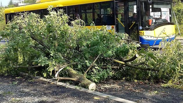 Následky čtvrteční bouřky v Teplicích