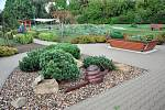 Domov důchodcůvBystřanech postupně mění zarostlou část zahrady na smyslovou zahradu.