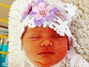 Ema Dragounová se narodila  Michaele Dragounové a Petru Dragounovi  z Oseka  11. července  v 10.02 hod. v ústecké porodnici. Měřila 50 cm a vážila 3,49 kg.