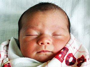Miminka narozená na Teplicku v 46. týdnu 2017