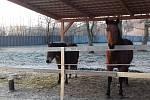 Mrazivé ale slunečné ráno ve středu 28. listopadu v Proboštově na Teplicku.