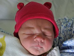 Sofie Ulbrichová se narodila Šárce Hamerové z Teplic 8. května v teplické porodnici v 11.47 hodin. Měřila 49 cm, vážila 3,1 kg.
