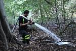 Několik hasičských vozů s Teplicka a okolí zasahovalo při požáru pod horou Stropník nedaleko Oseka. Neschůdný teren dával hasičům zabrat.